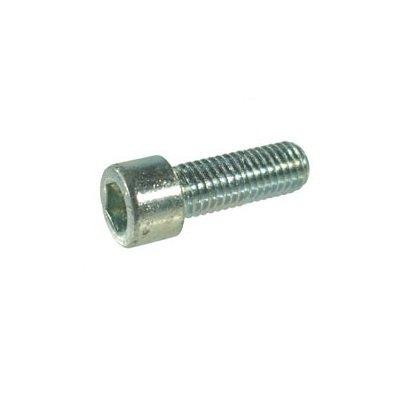 Imbusbout - zilver - M6 x 25 - per stuk